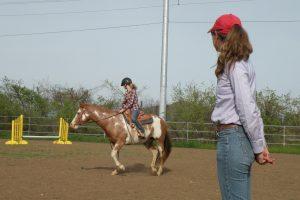 Teresa Kackert Great Horses of America