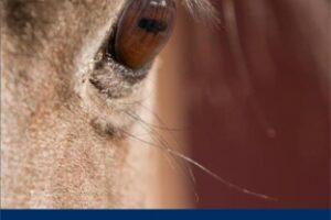pub-equine-professionals-manual-cover-printer-web